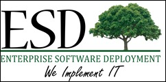 enterprise software deployment